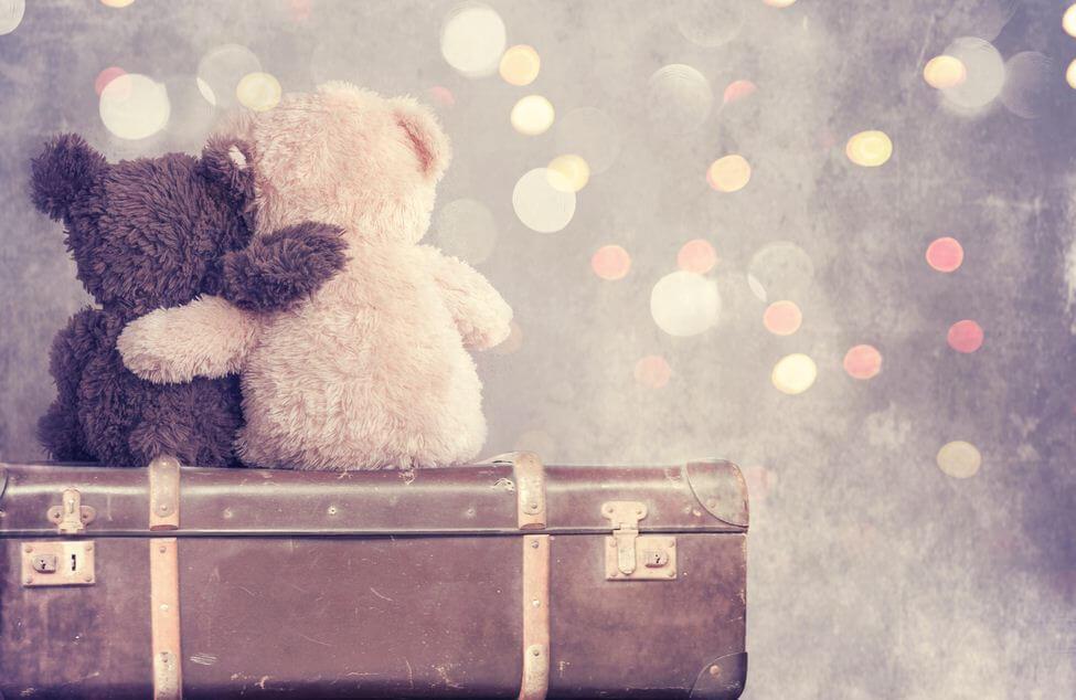 valizde birbirine sarılan oyuncak ayılar