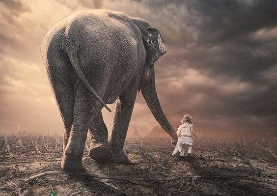 fili çeken çocuk