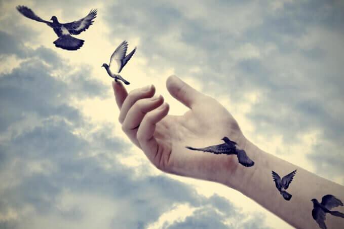 elden uçan kuşlar