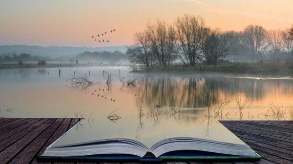 kitap ve göl