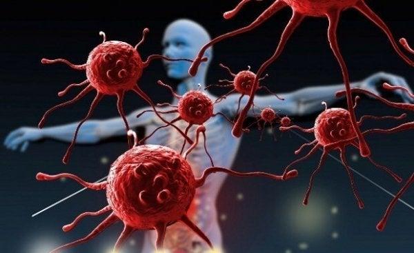 Bağışıklık Sisteminizi Nasıl Geliştirirsiniz?