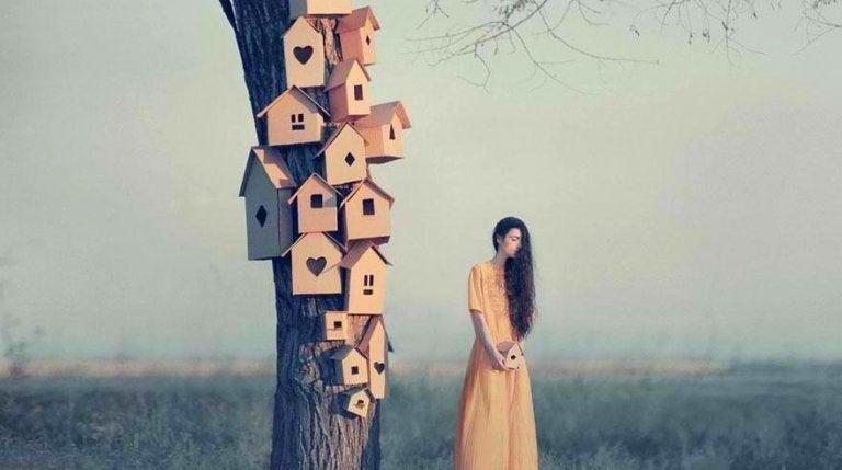 ağaçtaki kuş evlerini yapan kadın