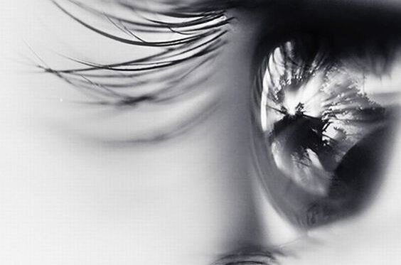 gözler ve kirpikler