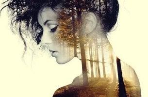 orman yansıması ve kadın