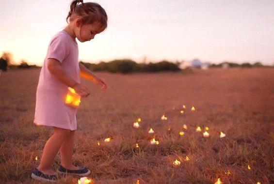 tarladan ışıklar toplayan kız çocuğu