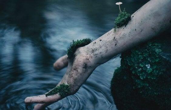 elleri yosunlu insan