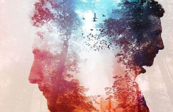 adam yüzü silueti ve orman