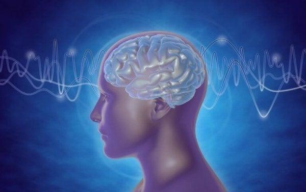 insan beyninden geçen dalgalar