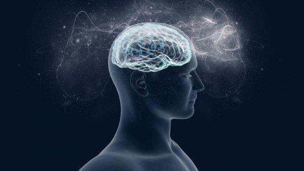 Magnezyum: Beyniniz Çok Seviyor