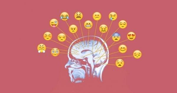 Duygularınızı İşlemenin En İyi ve Etkili Yollarını Öğrenin