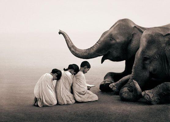 filin önünde eğilen çocuklar
