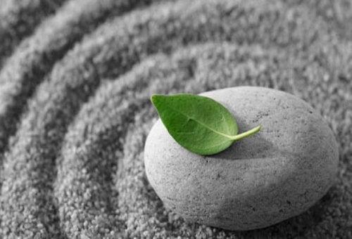 sadelik; kum, taş ve yaprak