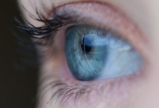 mavi göz bakıyor