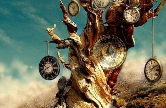ağaca asılı saatler