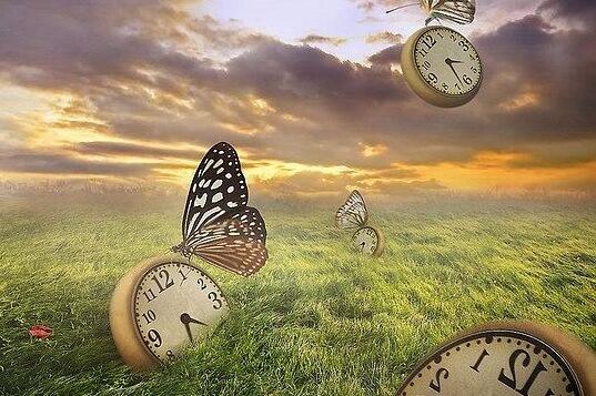 sürreal kelebekler