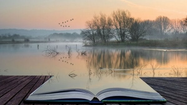 ayna ya da su kitap ve manzara