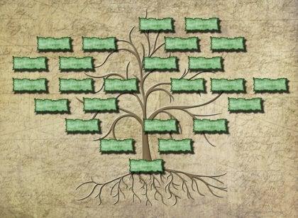 ağaç üstünde aile ağacı
