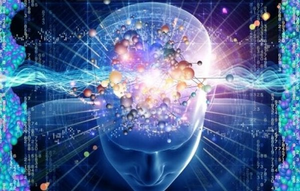 parlak nöronlu beyin