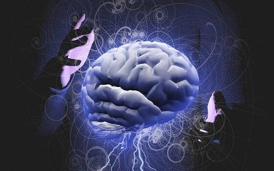 eller arasında ışıklı beyin