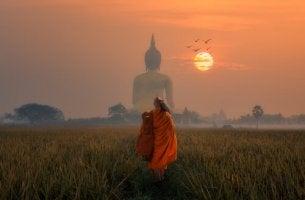 budist-rahip-gun-batimi