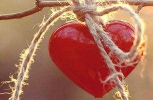 hasir-ipe-bagli-kalp