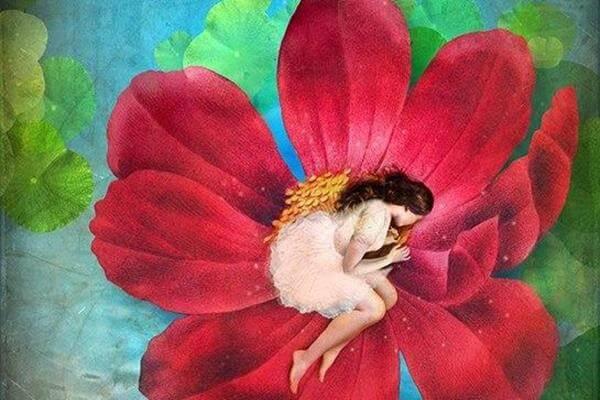 kadın çiçek içerisinde uyuyor