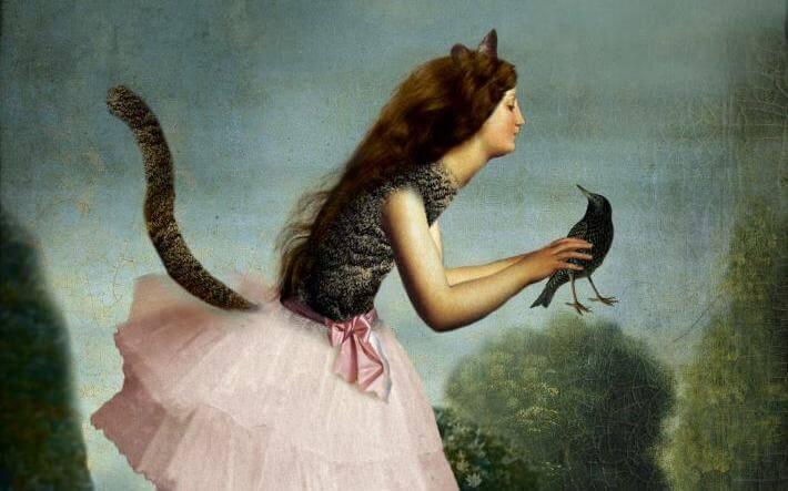 kedi kadın karga tutuyor
