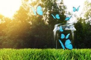 uçan mavi kelebekler