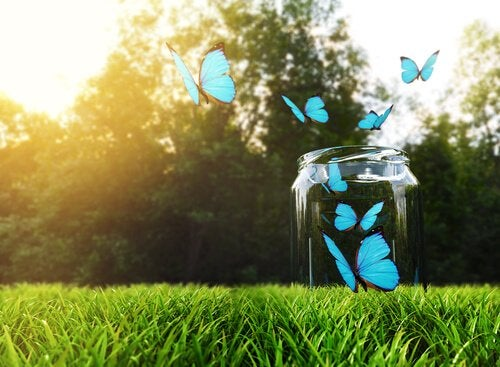 Mutluluk Kavanozu Tekniği: Nasıl Uygulanır ve Çalışır?
