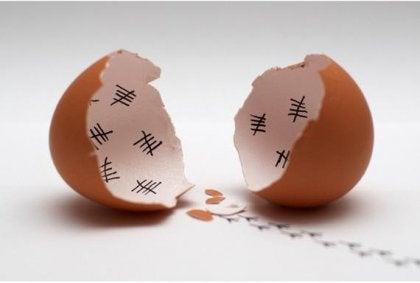 yumurta kabuğunda gün sayan civciv