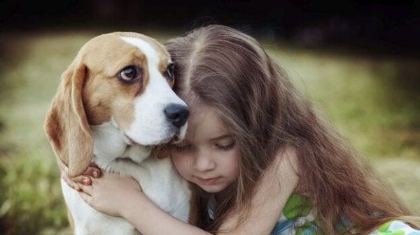 Köpeklerin Empati Kurabilmesinin İyileştirici Bir Gücü Vardır