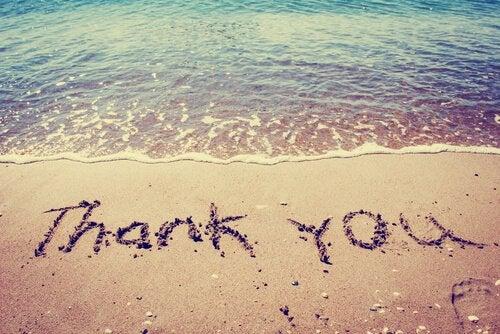 kuma yazılmış teşekkür ederim yazısı