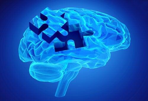 beynin mavi yapboz yapısı