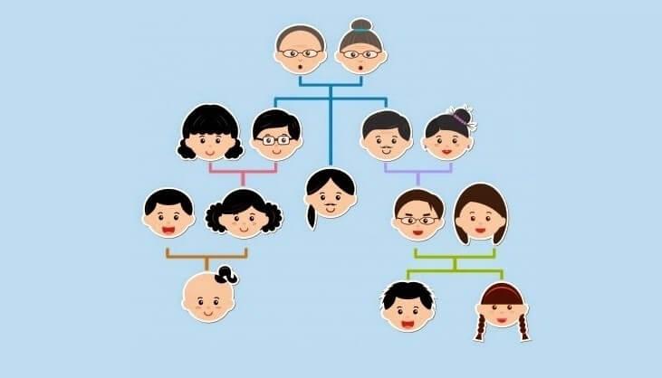 genogram kafalarından aile