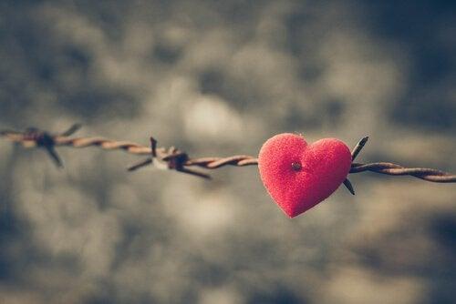 tel örgüye saplanmış kalp