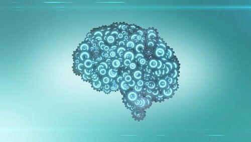 baloncuklu beyin