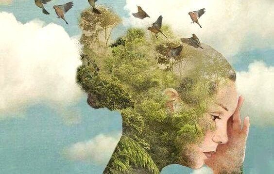 kuşlar kadının başı duygusal zeka yaraları iyileştirmek