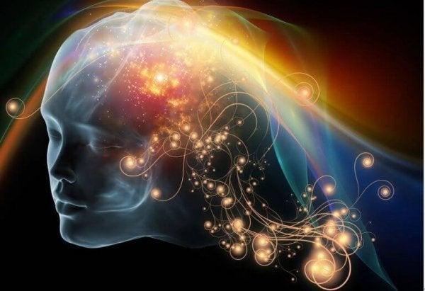 farkındalık halindeki beyin