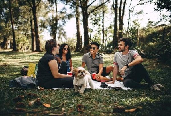 gençler piknik yapıyor