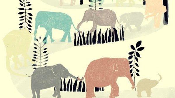 renkli filler ve siyah yapraklar