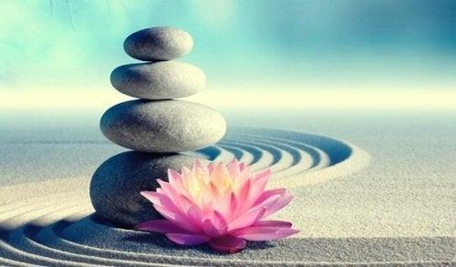 Hayatınızı Değiştirecek 7 Zen Öğretisi
