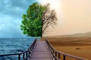 yarısı yeşil ağaç