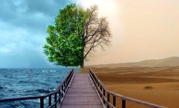 Depresyon Tedavisinde 4 Gestalt Terapisi Yöntemi