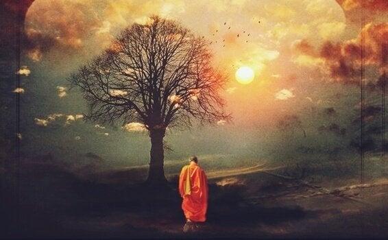 ağaca doğru yürüyen budist keşiş