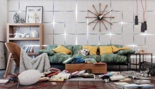 dağınık ev ve köpek