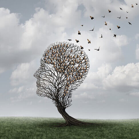 ağaçtan uçan kuşlar