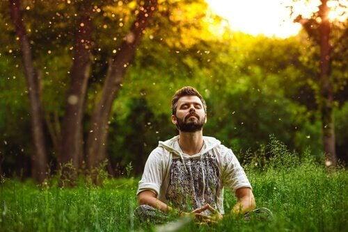 doğada meditasyon yapan adam
