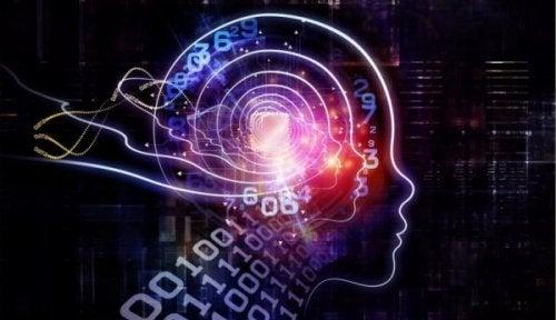 rakamlar ve beyin