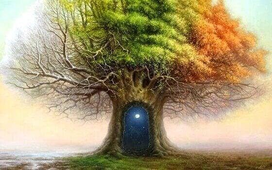 kapılı ağaç