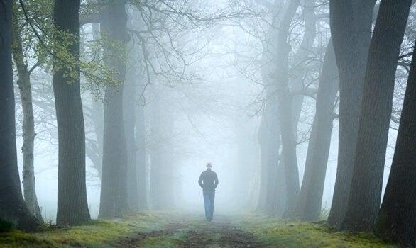 Orman Testi ve Psikanalizdeki Yeri
